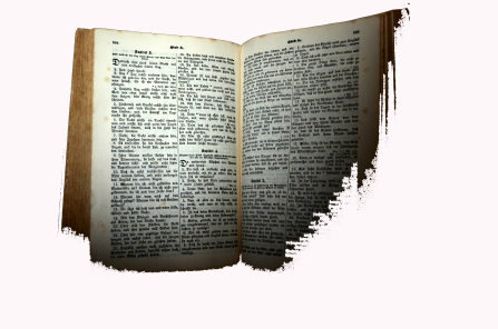 bible-white-background-book-208278